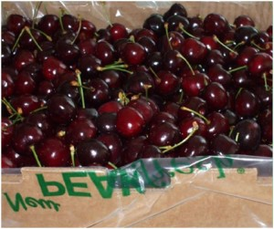 PEAKfresh delivers on cherry freshness